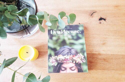 Druidéesse, un joli moment de lecture